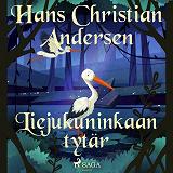 Cover for Liejukuninkaan tytär