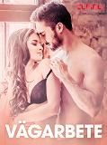 Cover for Vägarbete - erotiska noveller