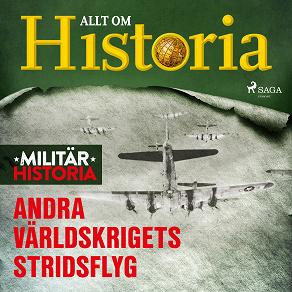 Cover for Andra världskrigets stridsflyg
