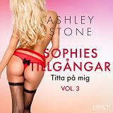 Cover for Sophies tillgångar vol. 3: Titta på mig - erotisk novell