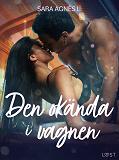 Cover for Den okända i vagnen - erotisk novell