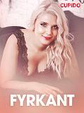 Cover for Fyrkant – erotisk novell
