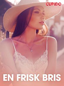 Cover for En frisk bris – erotisk novell