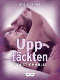Cover for Upptäckten
