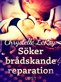 Cover for Söker brådskande reparation - erotisk novell