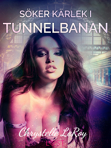 Cover for Söker kärlek i tunnelbanan - erotisk novell