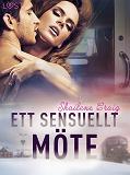 Cover for Ett sensuellt möte - erotisk novell