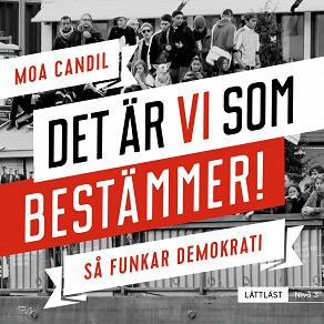 Cover for Det är vi som bestämmer! - Så funkar demokrati. Nivå 3 (lättläst)