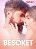 Cover for Besöket – erotisk novell