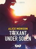 Cover for Trekant under solen