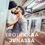 Cover for Erotiikkaa junassa