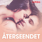 Cover for Återseendet - erotiska noveller