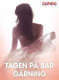 Cover for Tagen pa° bar ga¨rning – erotiska noveller