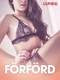 Cover for Förförd - erotiska noveller
