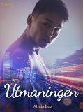 Cover for Utmaningen - erotisk novell