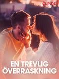 Cover for En trevlig överraskning – erotisk novell
