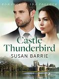 Cover for Castle Thunderbird