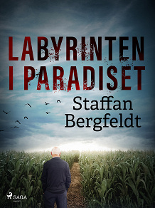 Cover for Labyrinten i paradiset