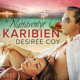 Cover for Nattäventyr i Karibien - erotisk romance