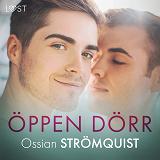 Cover for Öppen dörr - erotisk novell