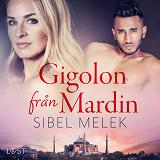 Cover for Gigolon från Mardin - erotisk novell