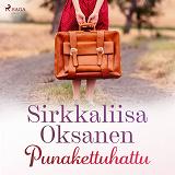 Cover for Punakettuhattu