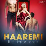 Cover for Haaremi - eroottinen novelli