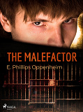 Cover for The Malefactor