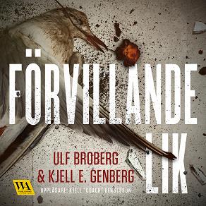 Cover for Förvillande lik