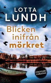 Cover for Blicken inifrån mörkret