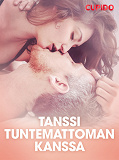Cover for Tanssi tuntemattoman kanssa – eroottinen novelli