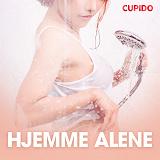 Cover for Hjemme alene - erotiske noveller