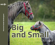 Cover for Big And Small