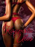Cover for Halu 3: Kaapista Ulos - eroottinen novelli
