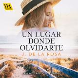 Cover for Un lugar donde olvidarte