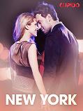 Cover for New York – eroottinen novelli